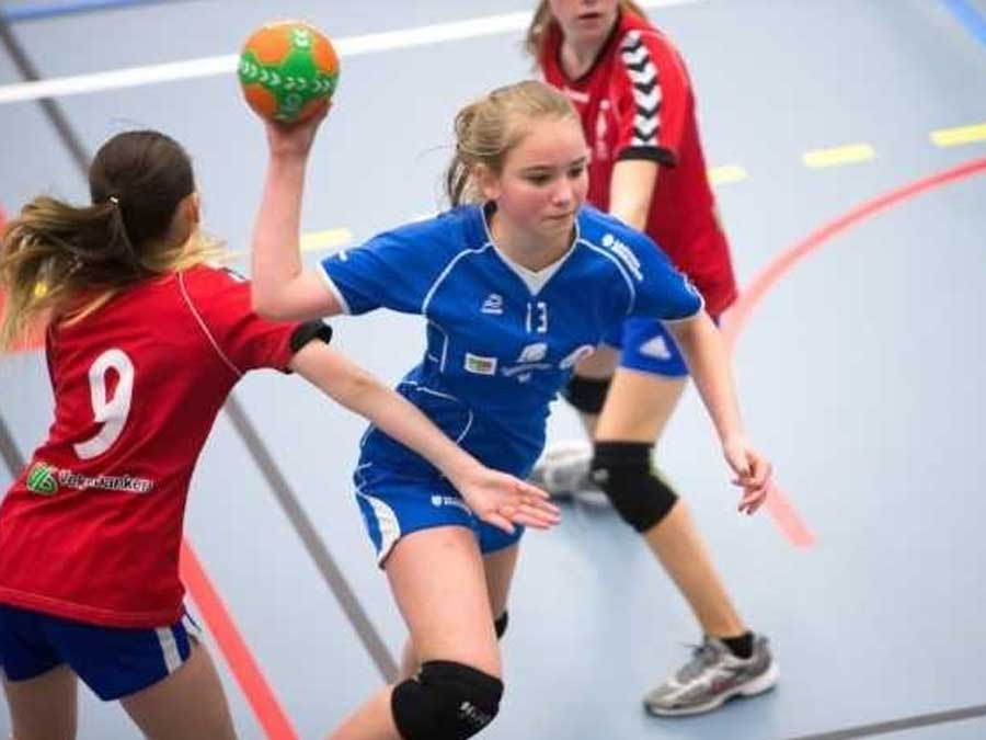 679a9d98 Trenger flere haller | handball.no